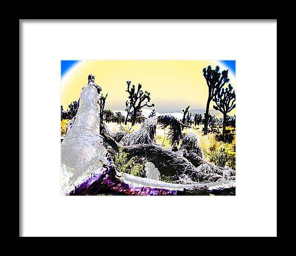 Desert Framed Print featuring the photograph Desert Landscape - Joshua Tree National Monment by Ann Tracy