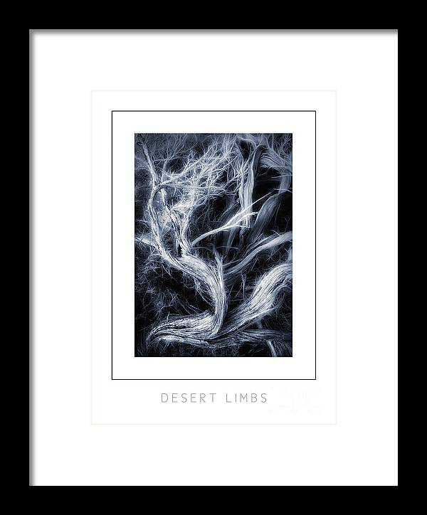 Branch Framed Print featuring the photograph Desert Limbs Poster by Mike Nellums