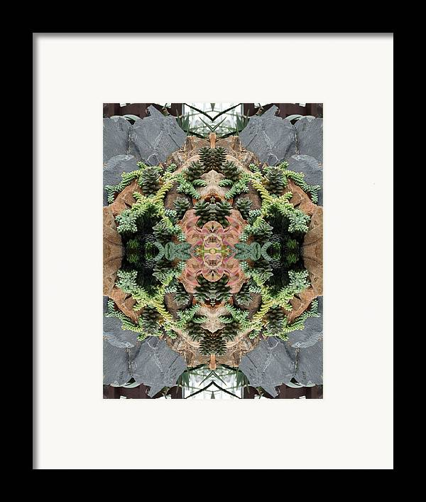 Desert Framed Print featuring the photograph Desert Series 1 Of 4 by Keri Renee