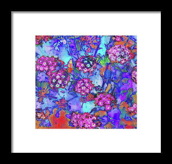 Art Framed Print featuring the photograph Desert Vibe Bloom by Michael Hope