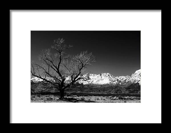 Black Adn White Framed Print featuring the photograph Desolation by Jessica Roth