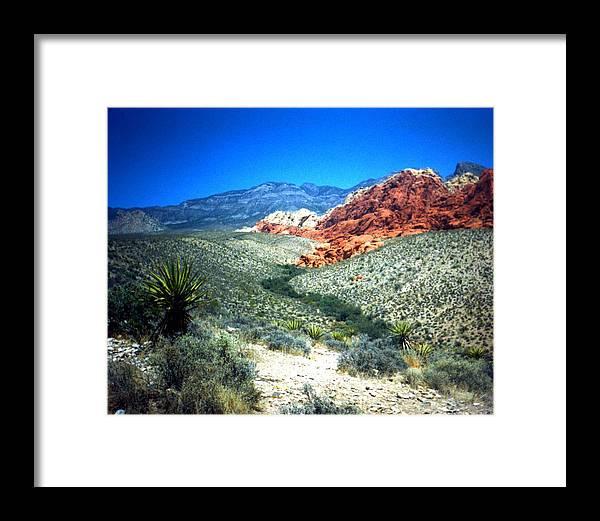 Dessert Framed Print featuring the photograph Dessert Pass by Jennifer Ott