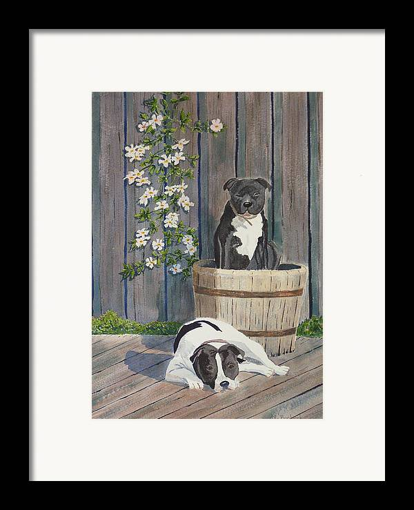 Dog Framed Print featuring the painting Devilish Duo At Rest by Ally Benbrook