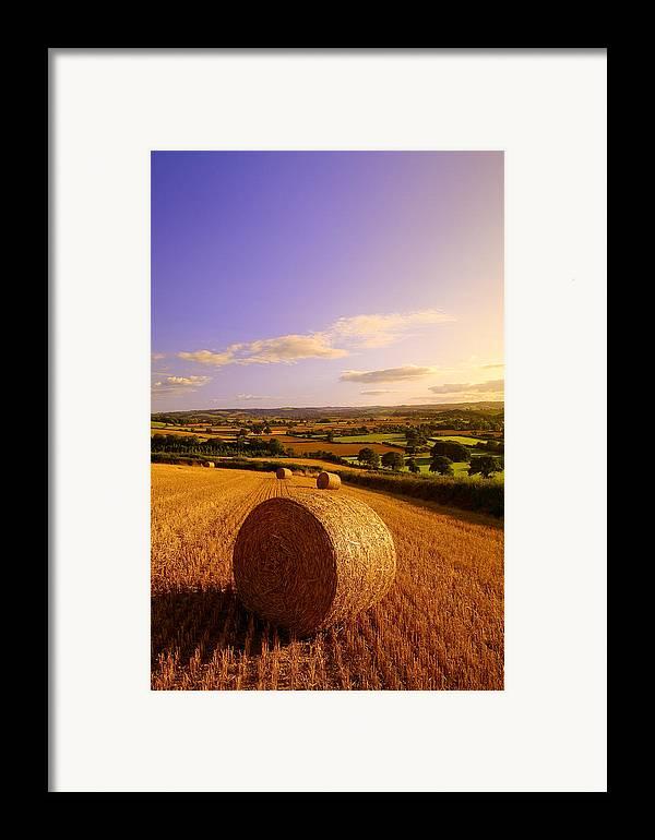 Devon Framed Print featuring the photograph Devon Haybales by Neil Buchan-Grant