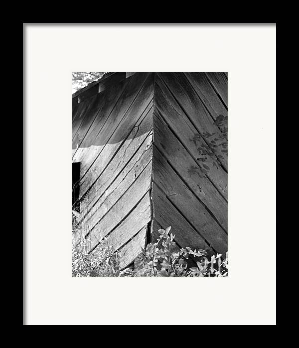 Wood Framed Print featuring the photograph Diagonals by Curtis J Neeley Jr