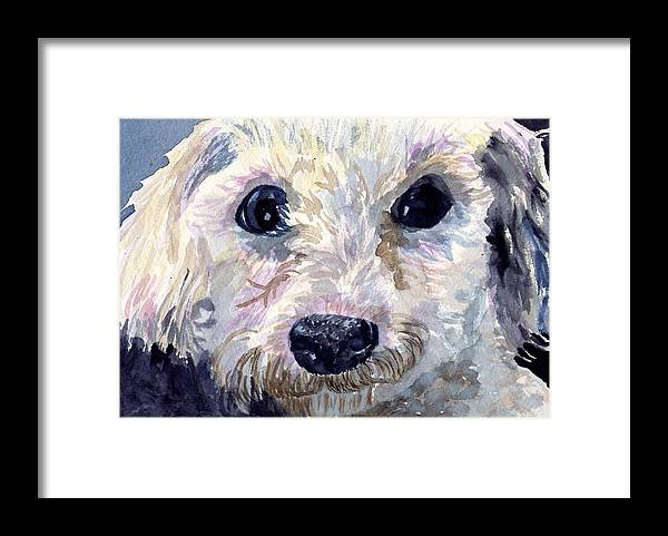 Bichon Frise Framed Print featuring the painting Did You Say Lunch by Sharon E Allen