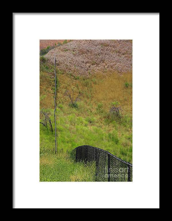 Nature Framed Print featuring the photograph Dillute by Viktor Savchenko