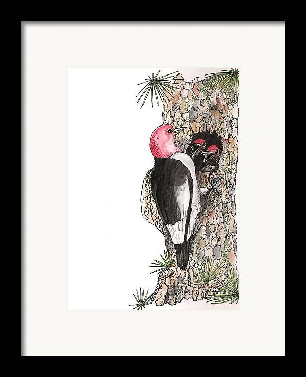 Bird Framed Print featuring the drawing Dinner Time by Terri Kilpatrick
