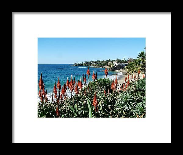 Laguna Framed Print featuring the photograph Divers Cove Laguna by John Loyd Rushing