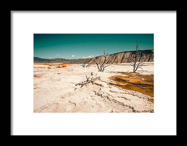 Yellowstone Np Framed Print featuring the photograph Do Not Touch by Radek Spanninger