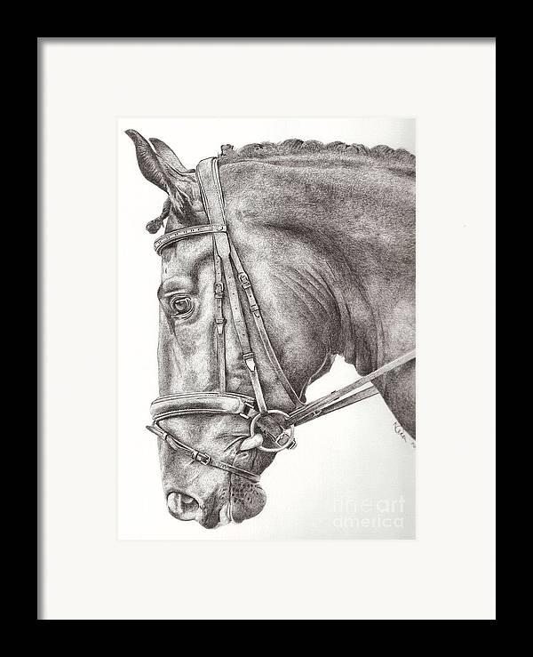 Horse Framed Print featuring the drawing Dobbin by Karen Townsend