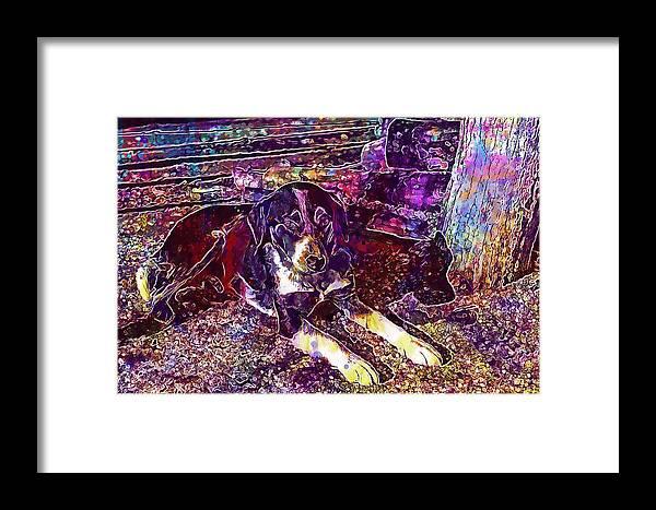 Dog Framed Print featuring the digital art Dog Beautiful Animal Cute Puppy by PixBreak Art