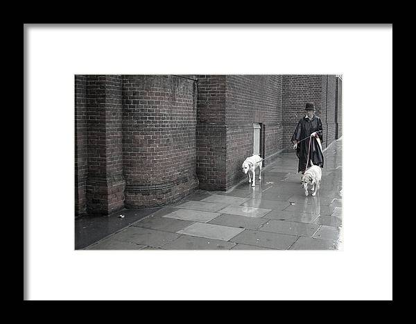 Jez C Self Framed Print featuring the photograph Doggie Strolling 1 by Jez C Self