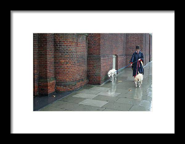 Jez C Self Framed Print featuring the photograph Doggie Strolling 2 by Jez C Self
