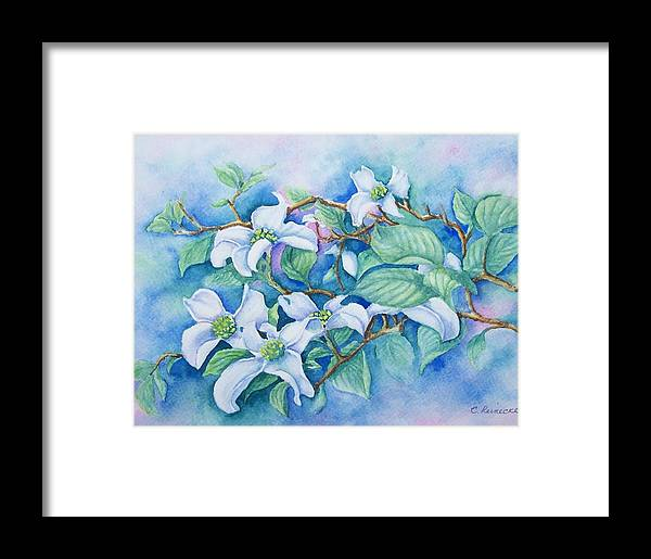 Floral Framed Print featuring the painting Dogwood by Conni Reinecke
