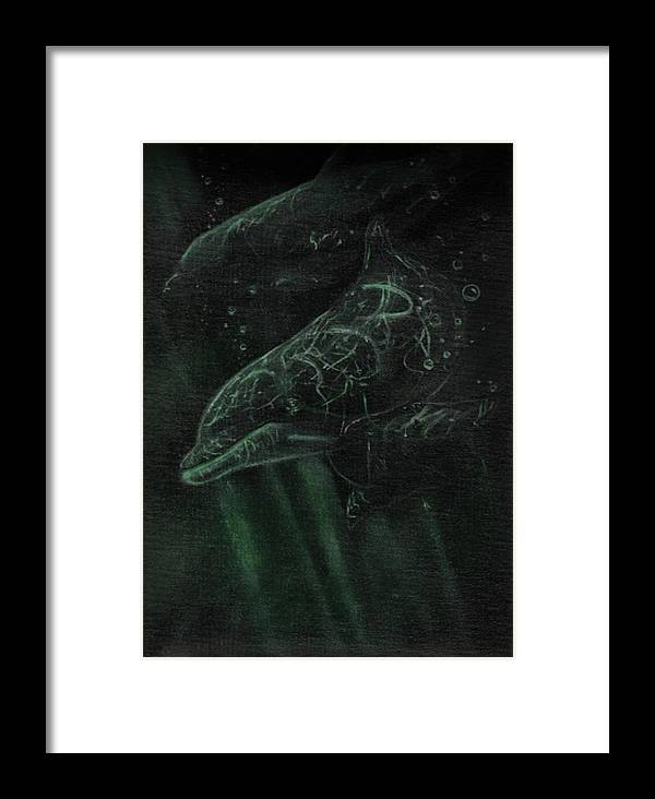 Dolphins Water Underwater Fish Sea Animals Ocean Freshwater Swimming Framed Print featuring the painting Dolphins 2 by Raymond Doward
