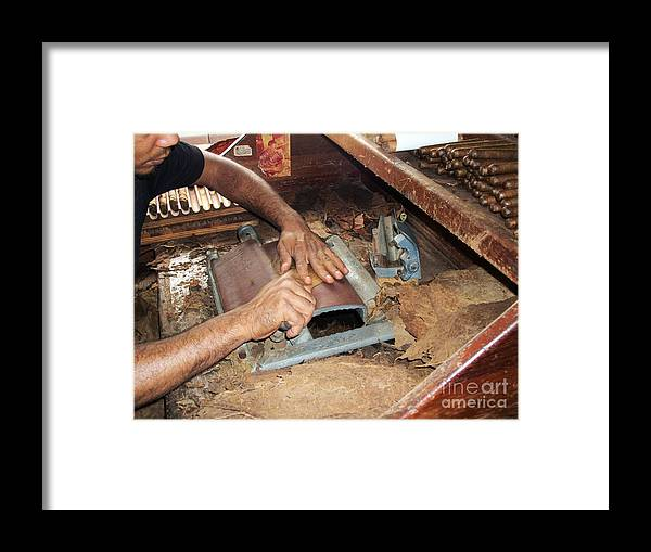 Dominican Republic Framed Print featuring the photograph Dominican Cigars Made By Hand by Heather Kirk