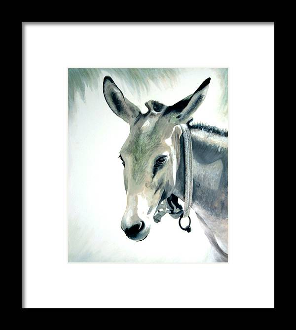Donkey Framed Print featuring the painting Donkey by Fiona Jack