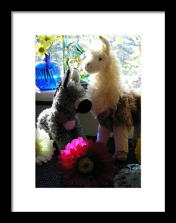 Stuffed Animals Framed Print featuring the photograph Donkey Joti And Dali Llama by Christina Gardner