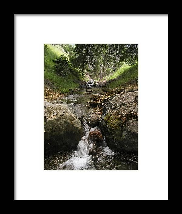 Mt. Diablo Framed Print featuring the photograph Donner Creek by Karen W Meyer