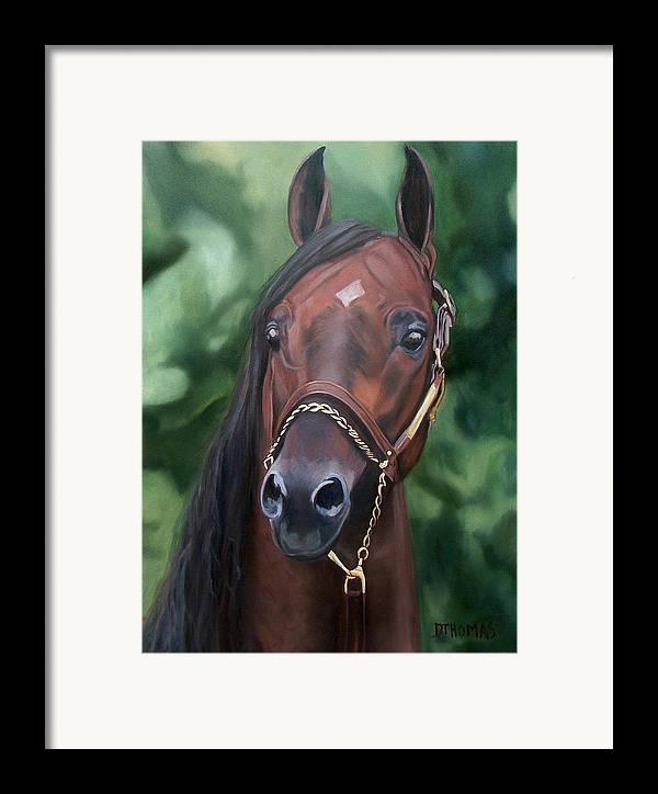 Horse Portrait Framed Print featuring the painting Dont Worry Saddlebred Sire by Donna Thomas