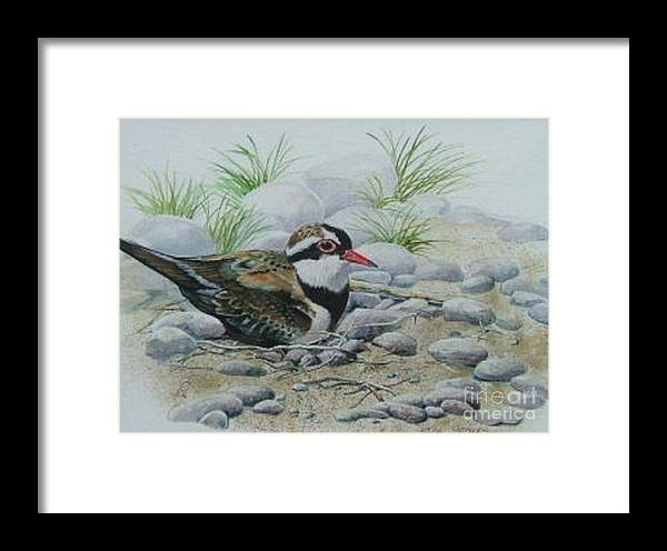 Pebbles Framed Print featuring the painting Dotterol by Val Stokes