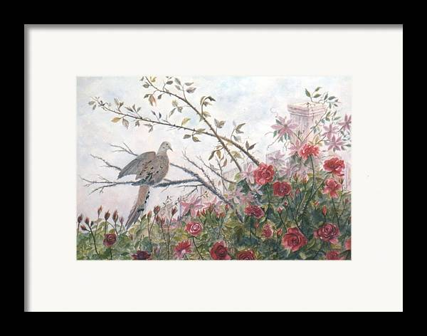Dove; Roses Framed Print featuring the painting Dove And Roses by Ben Kiger