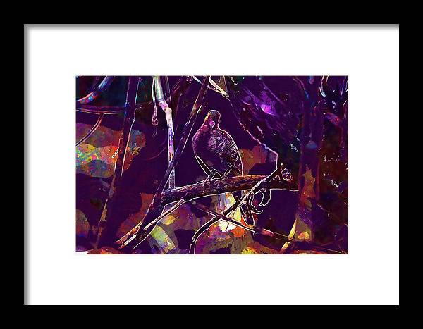 Dove Framed Print featuring the digital art Dove Birds Animals Nature by PixBreak Art