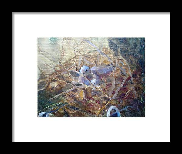Dove Planter Nest Earth Colors Framed Print featuring the painting Dove Nesting by Bryan Alexander