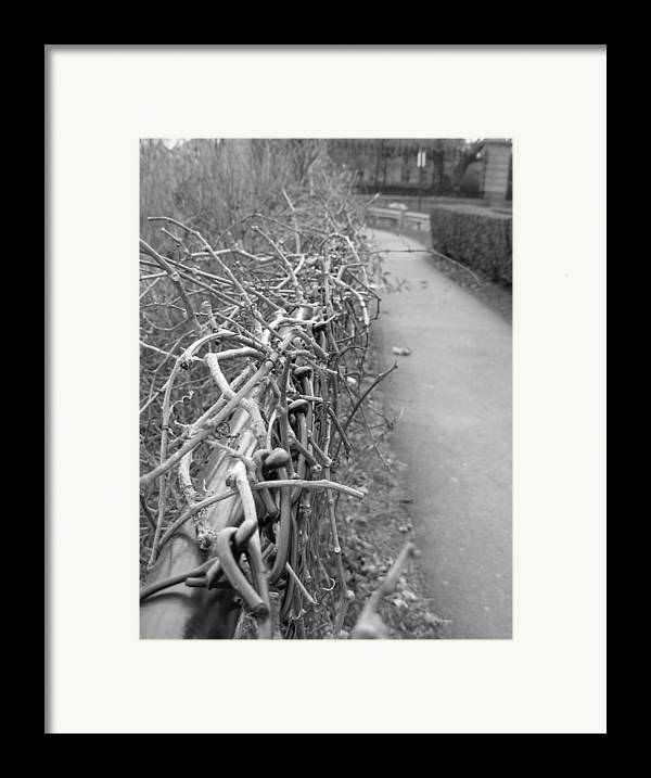 Black And White Framed Print featuring the photograph Down To The Wire by Amanda Vouglas