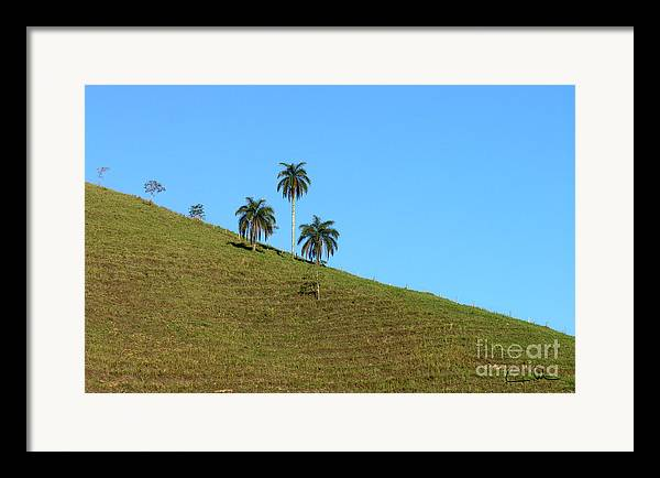 Downhill Framed Print featuring the photograph Downhill by Carlos Alvim