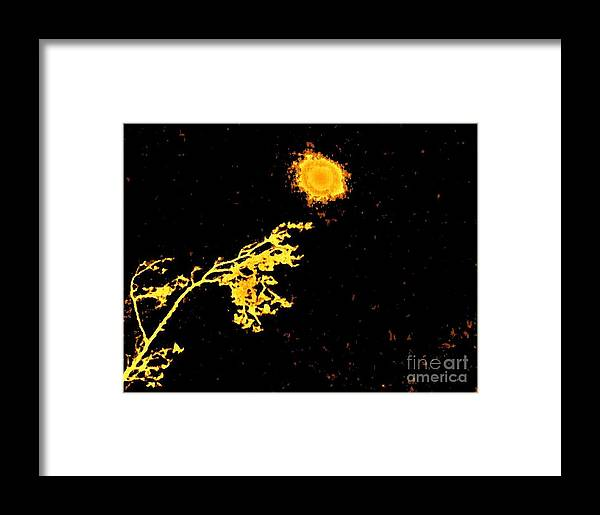 Photo Framed Print featuring the photograph Draculas Moon L by Marsha Heiken