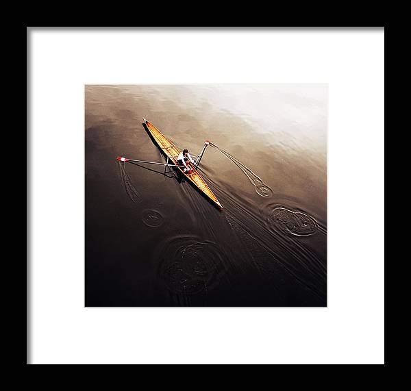 Action Framed Print featuring the photograph Dragonfly by Fulvio Pellegrini