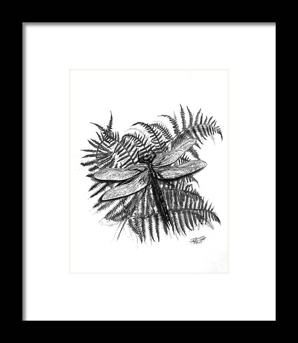 Dragonfly Framed Print featuring the drawing Dragonfly by Peter Piatt