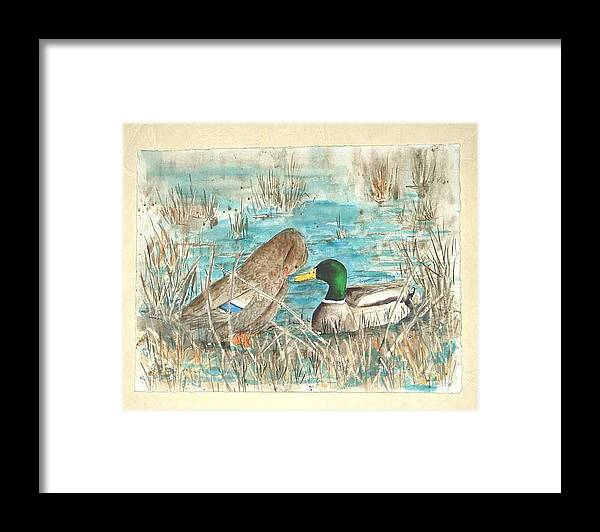 Mallards Framed Print featuring the painting Drake and Hen by Diane Ziemski