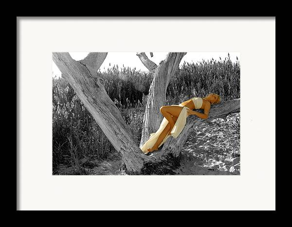 Tree Framed Print featuring the photograph Dream by Travis Aston