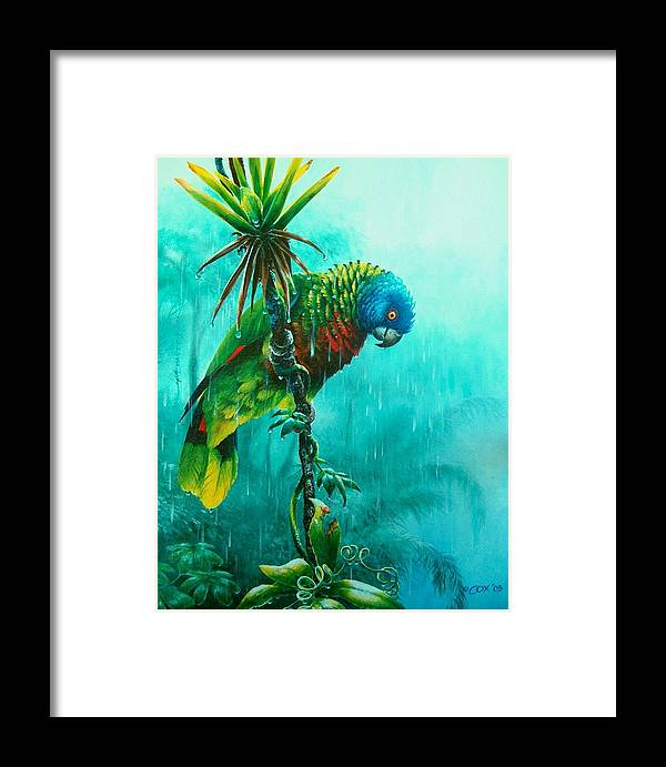 Chris Cox Framed Print featuring the painting Drenched - St. Lucia Parrot by Christopher Cox