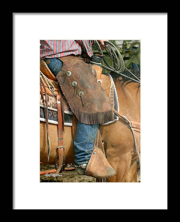 Cowboy Framed Print featuring the photograph Dressed For Work.. by Carol Miller