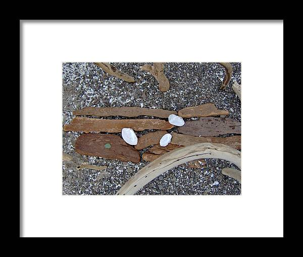 Driftwood Framed Print featuring the photograph Driftwood Altar Seven Detail by Mary Beth Dolan