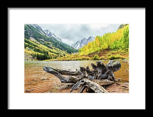 Driftwood Framed Print featuring the photograph Driftwood by Joseph Hawk
