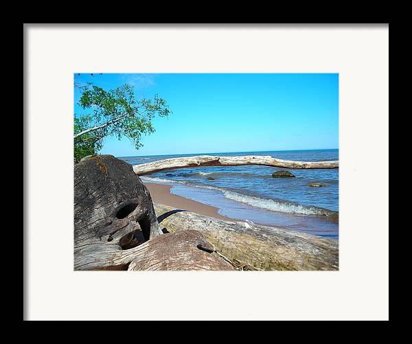 Ocean Framed Print featuring the photograph Driftwood by Peter Mowry