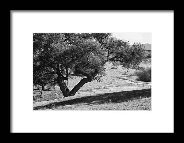 Black Framed Print featuring the photograph Drum Canyon by Patricia Stalter