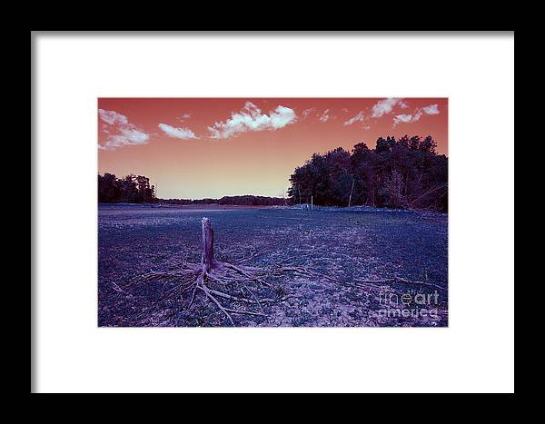 Art Framed Print featuring the photograph Dry Lake Infrared by Alan Look