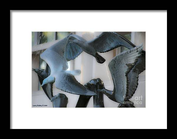 Seagull Framed Print featuring the photograph Du Pen Fountain by Larry Keahey