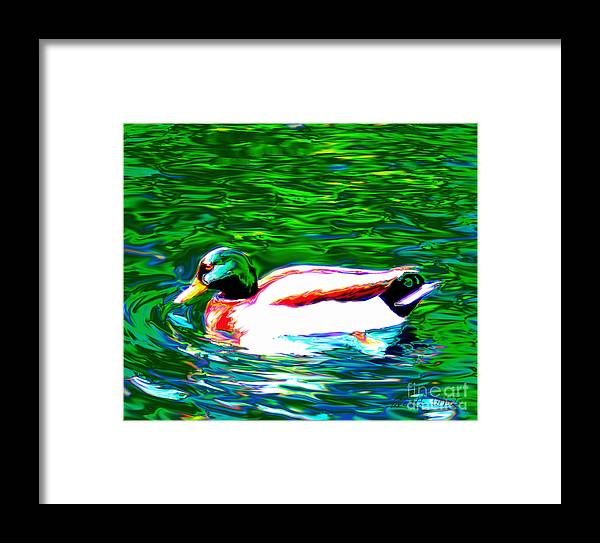 Duck Framed Print featuring the painting Duck by Everett White