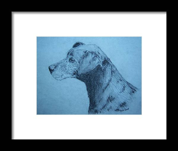 Dog Pet Friend Framed Print featuring the drawing Dudley by Ken Day