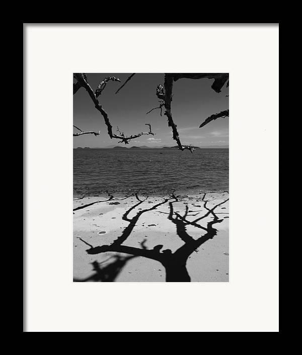 Dunk Island Framed Print featuring the photograph Dunk Island Australia 172 by Per Lidvall