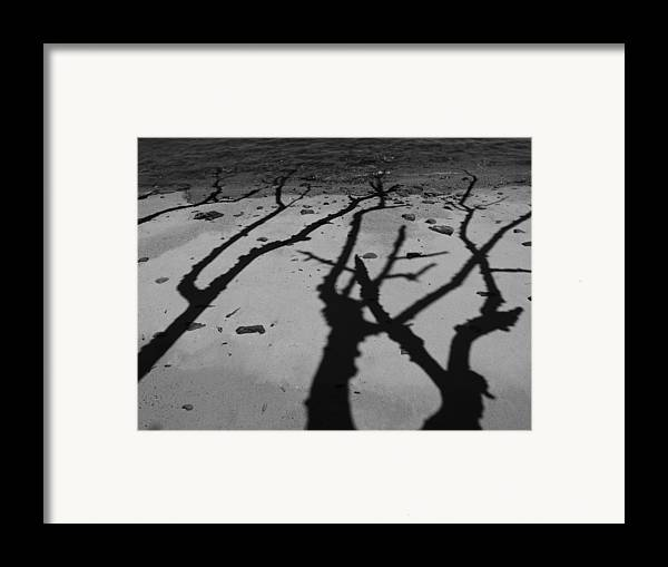 Shadows Framed Print featuring the photograph Dunk Island Australia 174 by Per Lidvall
