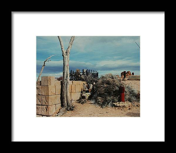 Dessert Framed Print featuring the photograph Dust To Dust by Lori Mellen-Pagliaro