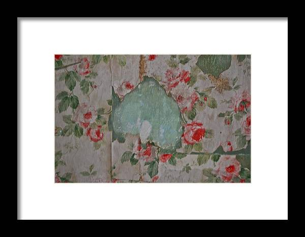 Vintage Antique Pink Roses Wallpaper Paper Framed Print featuring the photograph Dusty Roses by Mindy Roth